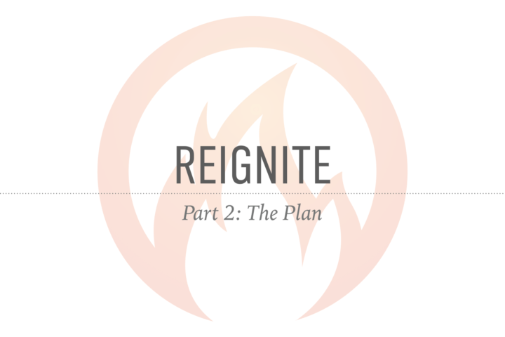 Reignite, Part 2 - The Plan