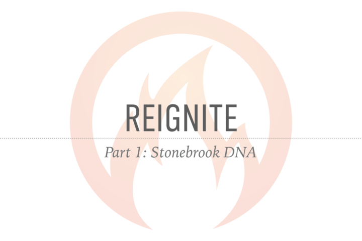Reignite, Part 1, Stonebrook DNA